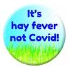 Hay Fever Badge