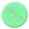 Team Nice Button Pin Badge